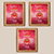 Pack of 3  + ₹332.00