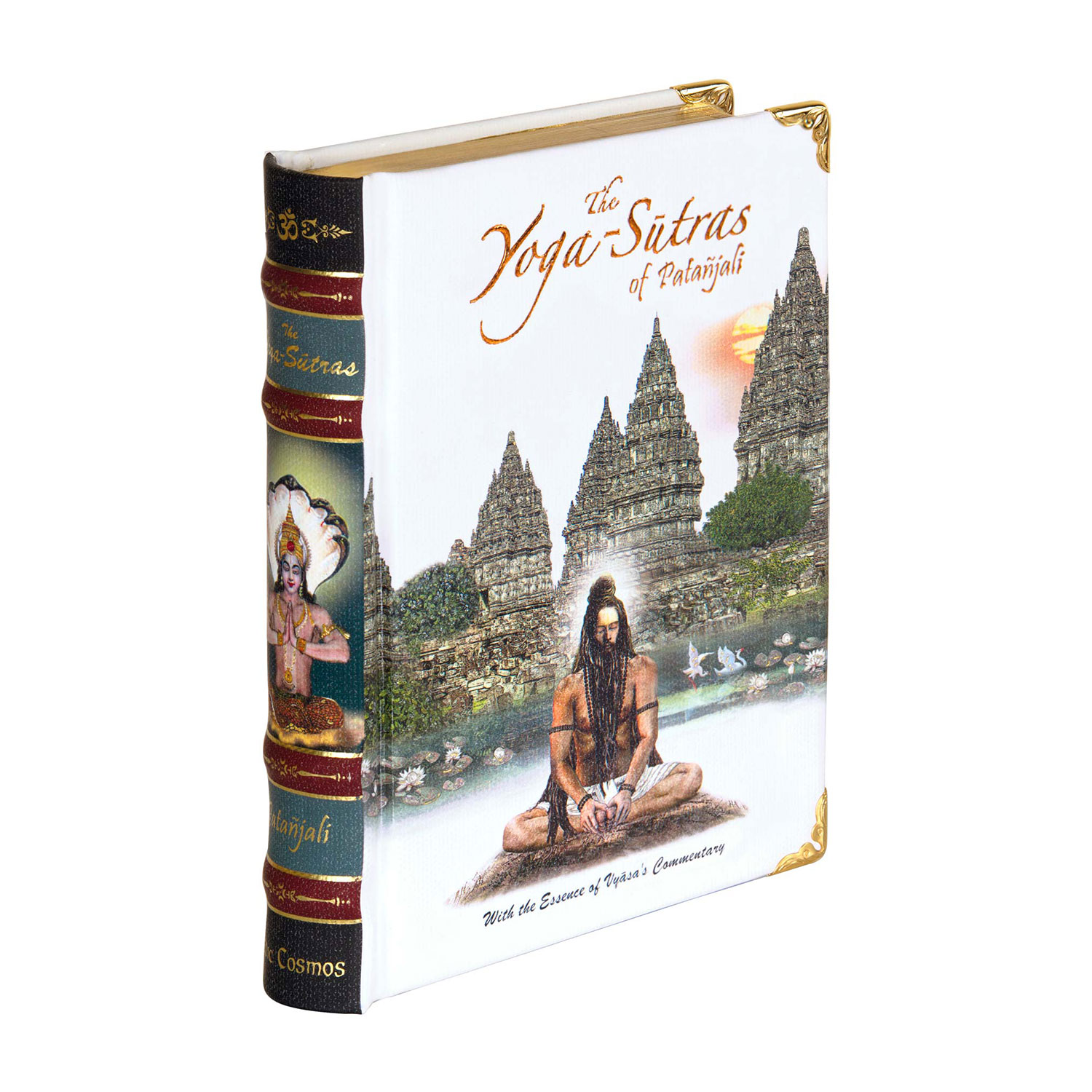 The Patanjali Yoga Sutra A6